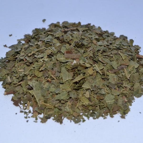 Грецкий орех, лист