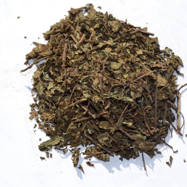 Ортосифона, лист